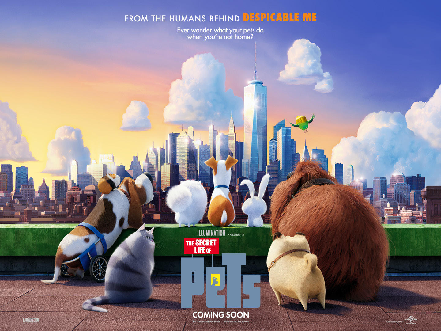 The Secret Life Of Pets Free Film Festivals
